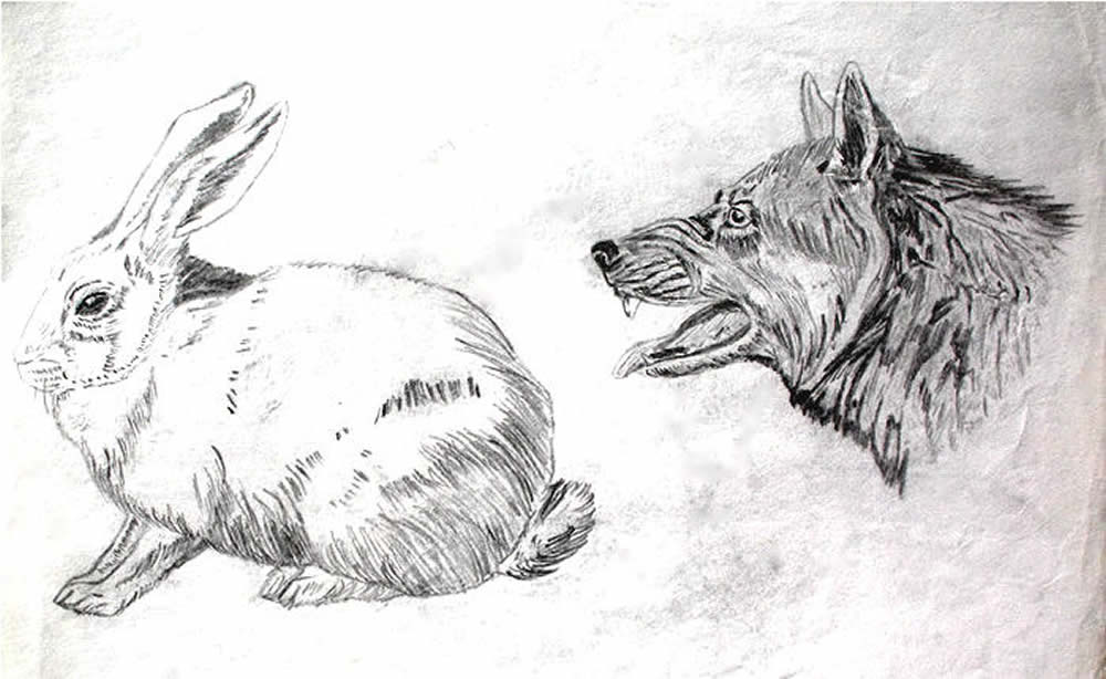 Artwork By Duane Hurst Pencil Drawing 1967 Rabbit And Wolf